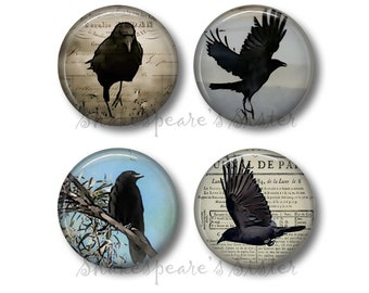 Nature Magnet Corvid Black Bird Magnet Crow Gift Crow Photo Magnet Bird Photography Magnet Black Crow Magnet Ravens and Crows