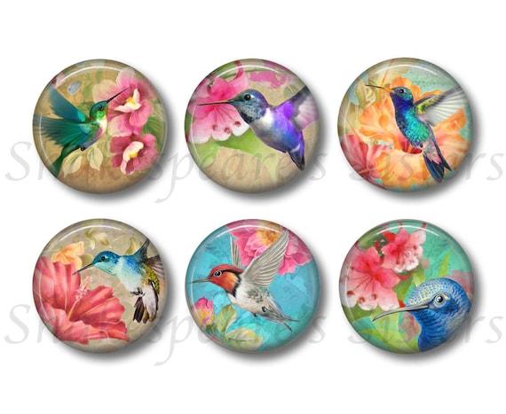 set of 6 magnetsbadges Humminbirds fridge magnets