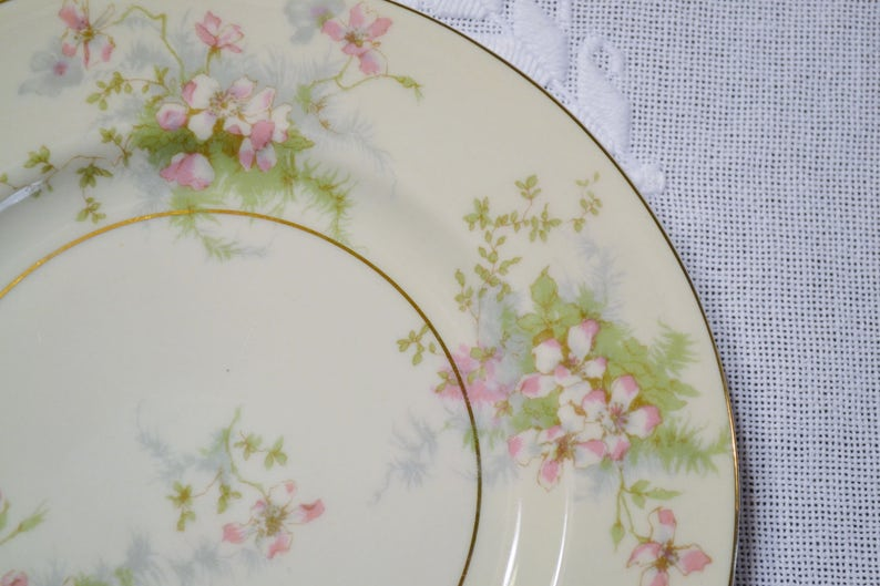 Vintage Theodore Haviland Apple Blossom Salad Plate Set of 8 image 0