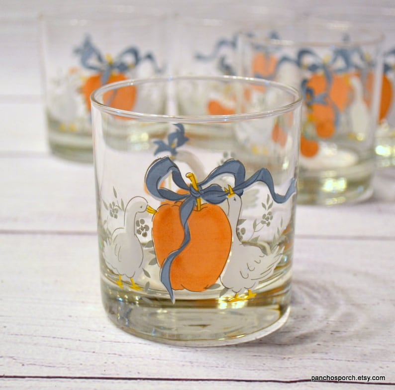Vintage Marmalade Geese Glass Tumbler Set of 5 On the Rocks image 0