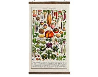 Vintage Harvest Print, drawings from 1800's, Free Shipping