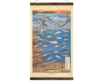 Fishes of the Great Lakes Chart, Free Shipping