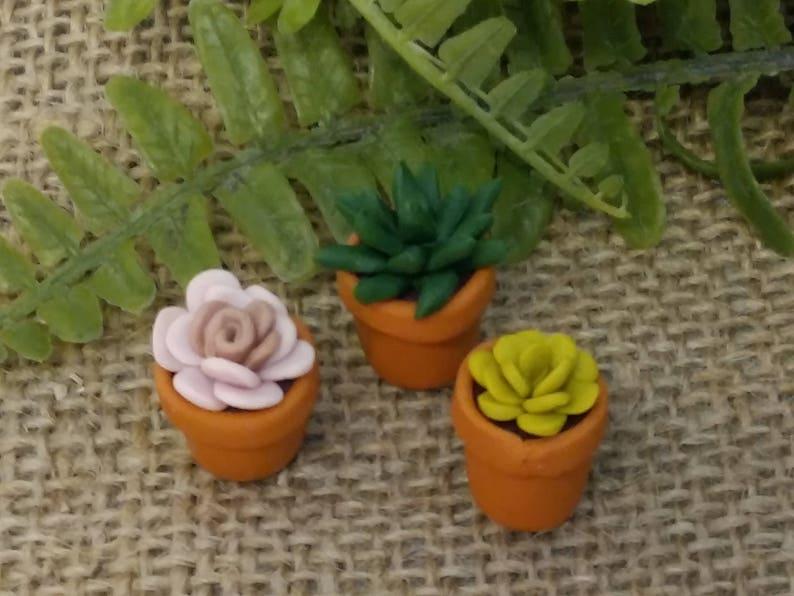 Mini Polymer Clay Succulents Terrarium Plants Miniature Etsy