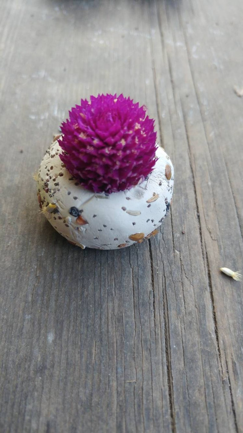 baby shower wedding favour thank you 50 seed bombs purple gomphrena save the bees wild flower seed ultra violet