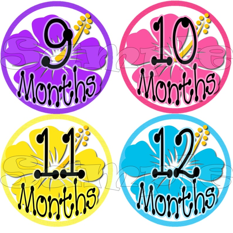 Monthly Baby stickers Baby Shower Gift 12 Months Infant age Milestone stickers Month to Month Baby Girl Hibiscus Flowers decals belly decals