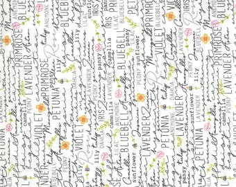 Spring Chicken - Posey Cream by Sweetwater for Moda fabrics, 1/2 yd, 55520 11