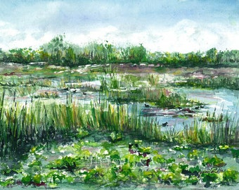 Loxahatchee marsh print