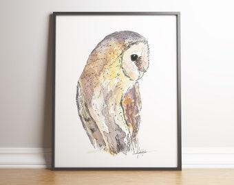 Barnowl, barn owl, owl, bird of prey, bird painting, owl painting, country art