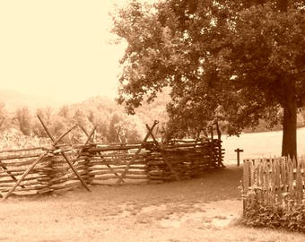 Old Fashioned Sepia Fence & Tree Photograph, Available in 5x7 and 8x10 inches