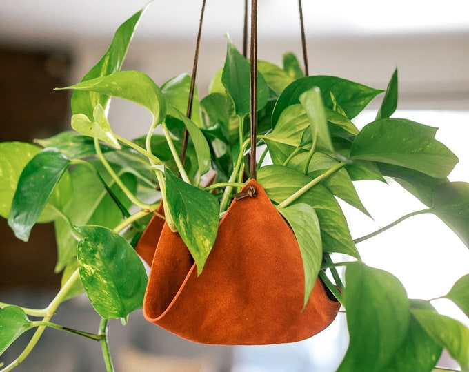 Rust Leather plant hanger, plant hanging, plant holders, leather decor