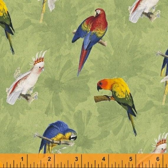Tropic Rainforest II Love Birds Black by Maria Kalinowski