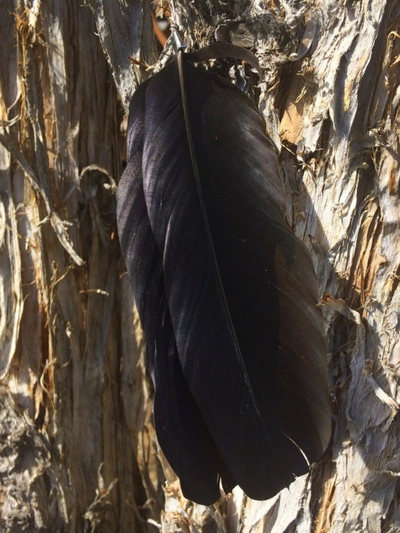 Crow Feather Earrings