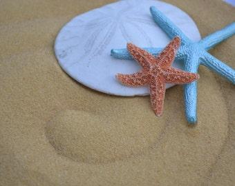 Beige Sand, Beach Decor, Craft Supply, Wedding Decor   1/4 Cup