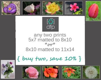 Any 2 Matted Photography Prints, Home Décor, Wall Art, 8x10 matted to 11x14, or 5x7 matted to 8x10