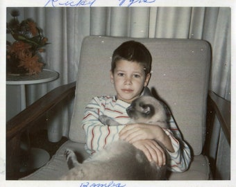 Vintage Photo Little Ricky and His Siamese Pet Cat 1960's, Original Found Photo, Vernacular Photograph