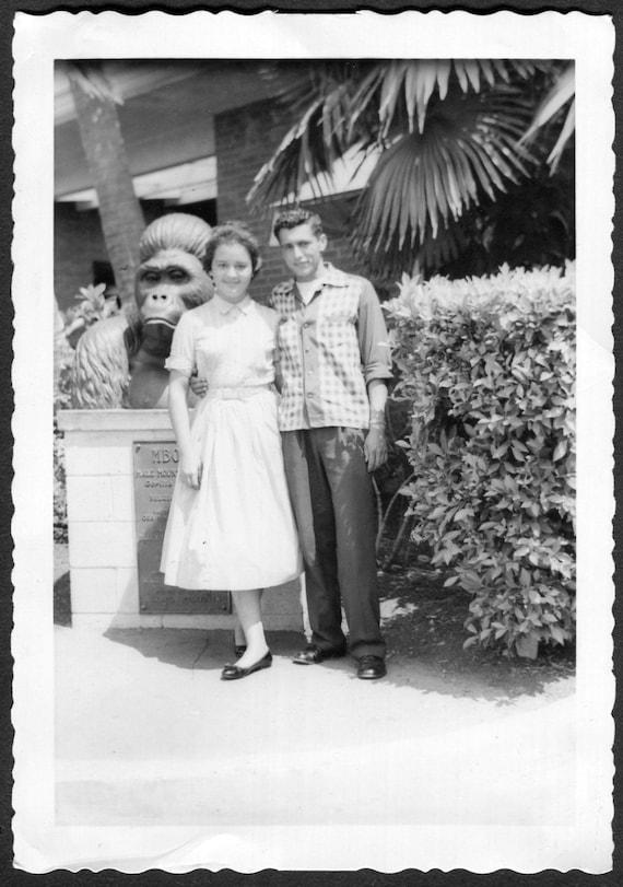 Teen Zoo Vintage
