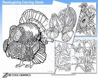 thanksgiving coloring sheets kids digital realistic jpg printable teachers kids crafts fun project turkey gourds sunflowers leaves