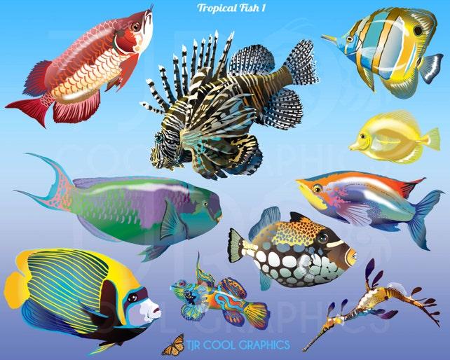 Tropical Fish 1 Digital Realistic Clip Art PNG Printable