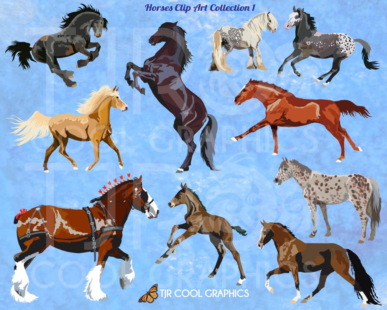 Horse Clip Art 1 Digital Realistic Clip Art Horses Clipart