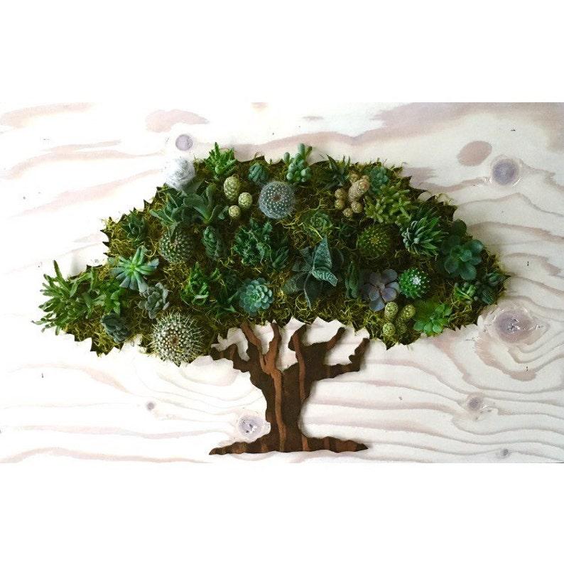 Hanging Planter Oak Tree Succulent Living Wall CUSTOM COLOR Wall Planter Cacti Vertical Garden
