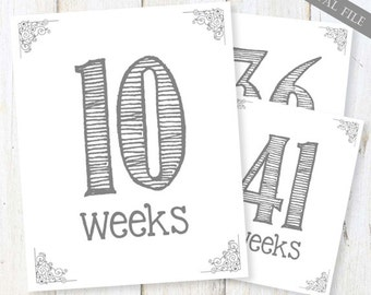 Weekly Pregnancy Signs - White and gray signs - Every Other Week (Weeks 4-40) - 8x10 Prints