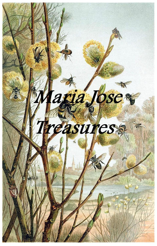Ilustraciones Flores E Insectos Antiguos Digital Etsy