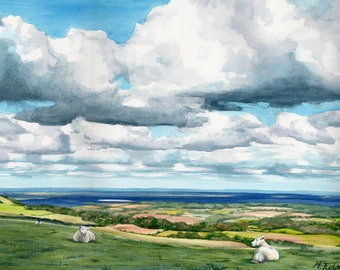 South Downs Sheep, original watercolour painting