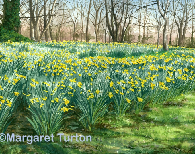 Featured listing image: Colours of Spring, watercolour painting featuring English daffodils