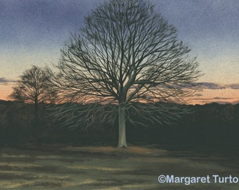 Winter Sunset Print, mounted and signed