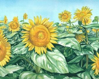 Sea of Sunflowers, original watercolour painting