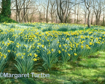 Colours of Spring, watercolour featuring English daffodils