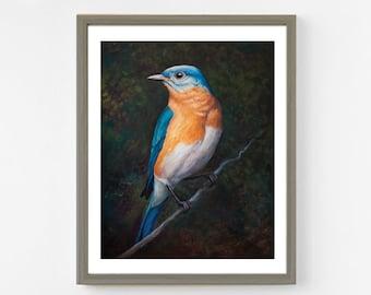Eastern Bluebird Fine Art Print. Bird Art. Bluebird Painting. Oil Painting. 8x10 Wildlife Art. Bluebird Art. Bluebird Print. Bird Wall Decor