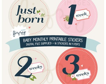 16x Baby Monthly Milestone Stickers Girl Printable Instant Download - Digital file only. BM0002