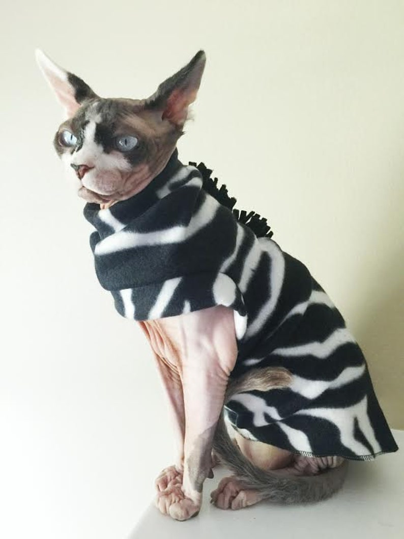 Zebra  Costume for Sphynx Devon Rex Peterbalds and all cats.