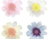 8 Large Flower Plates, Garden Party Plates, Floral Paper Plates, Bridal Shower Party, Afternoon Tea Party, Meri Meri
