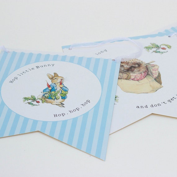 Peter Rabbit Paper Napkins Small 1st Birthday Party baby Shower Christening  x20