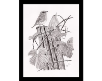 Print of one of my original pencil drawing of a bird on an old post