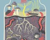 Micro Ecosystems: Soil Terrarium Art Print