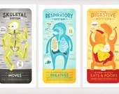 All Five of The Body System Prints DEAL