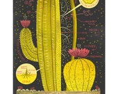 The Anatomy of a Cactus