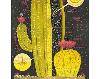 T-Shirt: Cactus Anatomy   Etsy