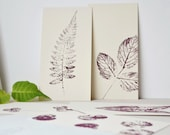 Vegetal illustrations • to collect season after season • Winter collection (volume 1) • Original prints