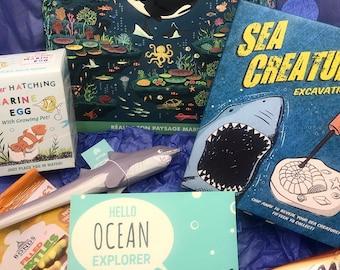 Ocean explorer box gift, birthday box gift, ocean lockdown gift, gift for boy, gift for girl, sealife gift, educational gift