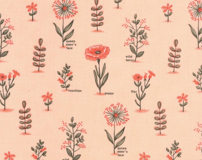 Le Pavot Blush designed by Sandy Gervais for Moda Fabrics, 100% Premium Cotton by the Yard