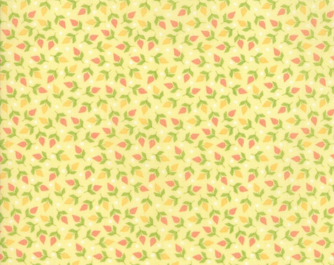 Sunnyside Up Small Lighthearted designed by Corey Yoder for Moda Fabrics, 100% Premium Cotton by the Yard