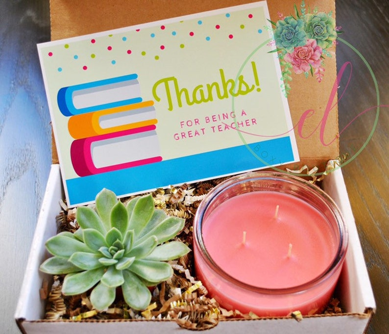 Teacher Appreciation Gift Box, succulent plant gift box