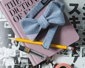 Ralph Men's Bow tie Cotton Stripe - Chambray blue
