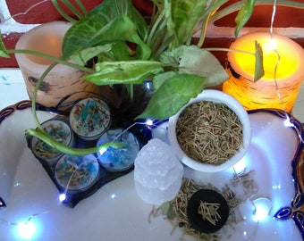 Mysterious Witchy Box by Blowing on Dandelion May Box Avaliable and April Items Revealed!
