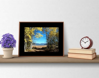 """Scenic Path Wall Art: 11"""" by 14""""/Inspirational Landscape/Frame-ready by Pam's Fab Photos"""