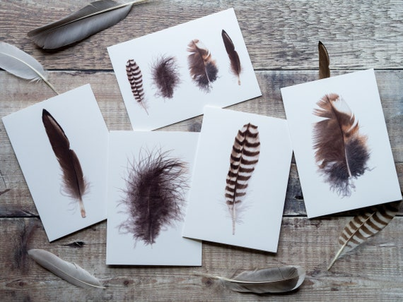 Pack of Feather Cards - Blank Greeting Cards, Notecards with Recycled Envelopes - Pack of 5 or 10 - Plastic-Free! - Bird & Nature Lovers